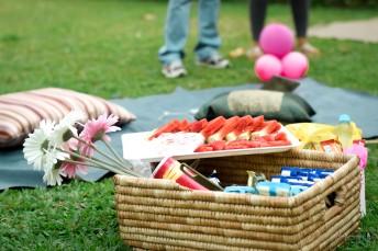 demi akin blog picnic-45